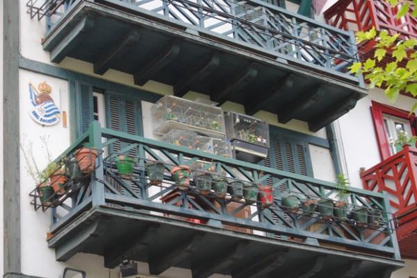 Rue San Pédro